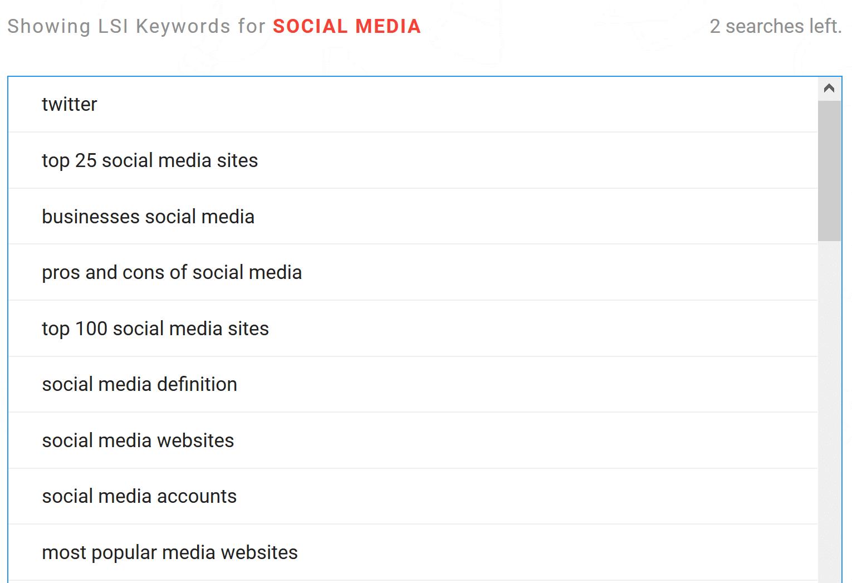 lsi keyword result
