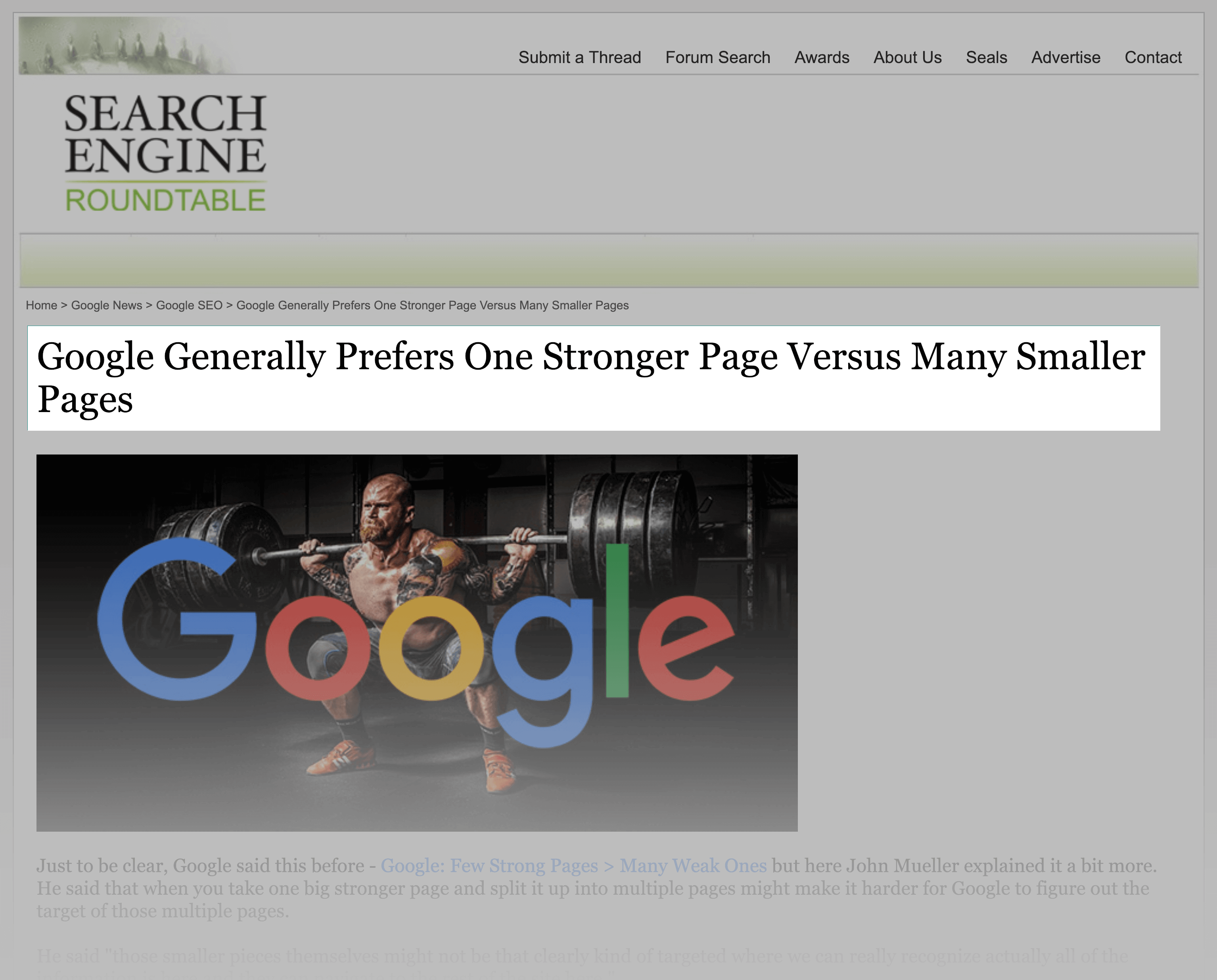 Google prefers smaller sites with a few awesome pages