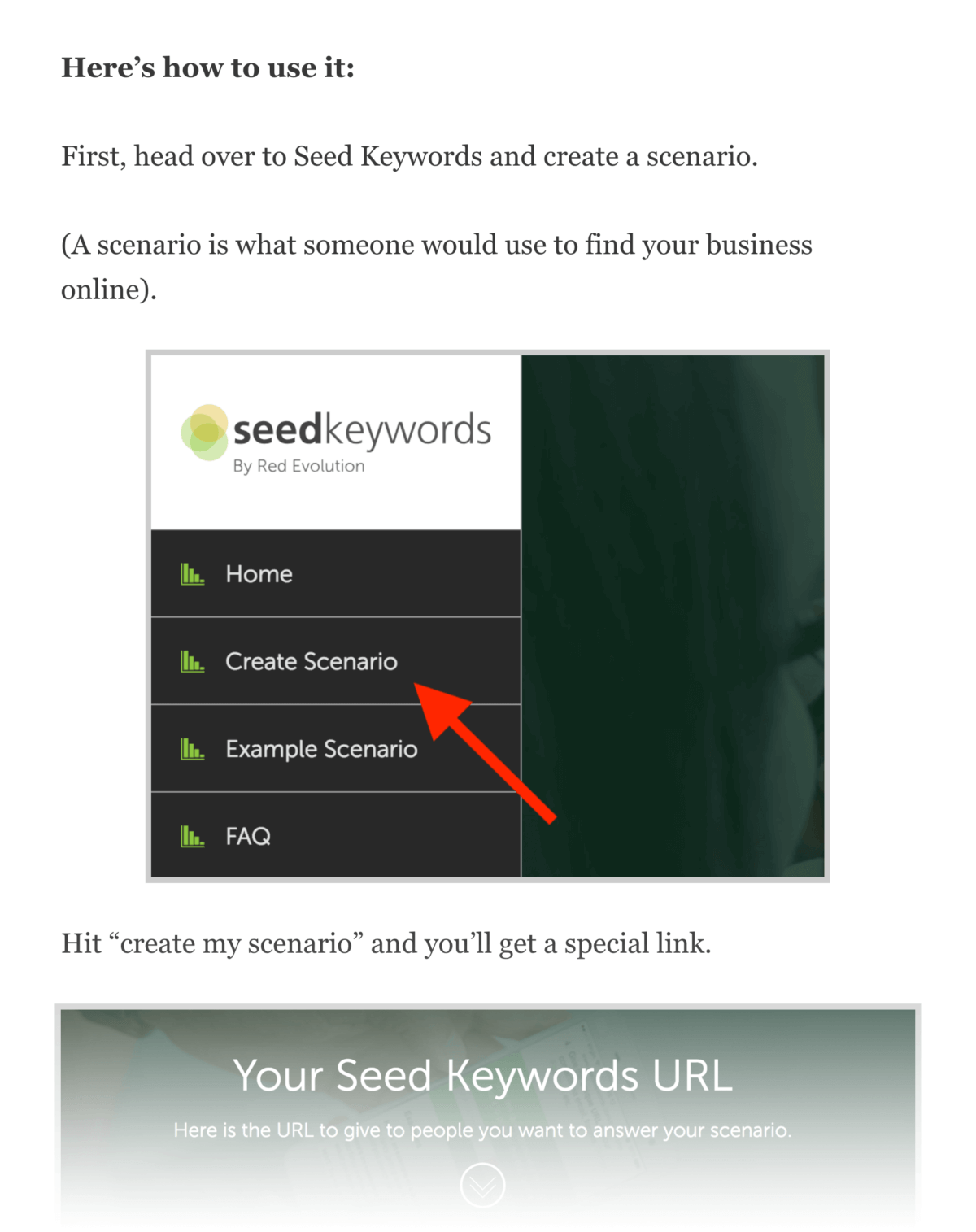 Seed keywords – Steps
