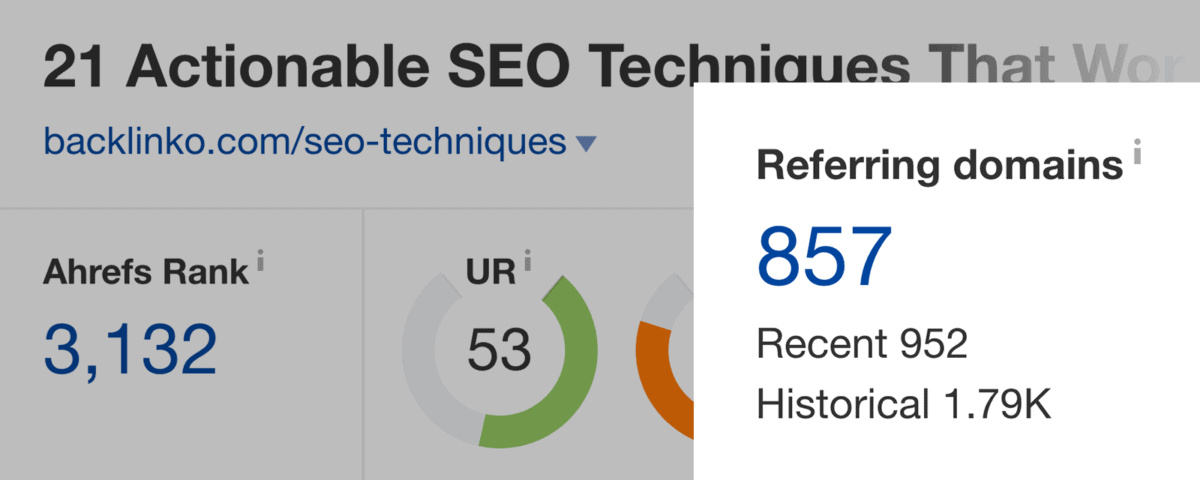 SEO Techniques – Referring Domains in Ahrefs