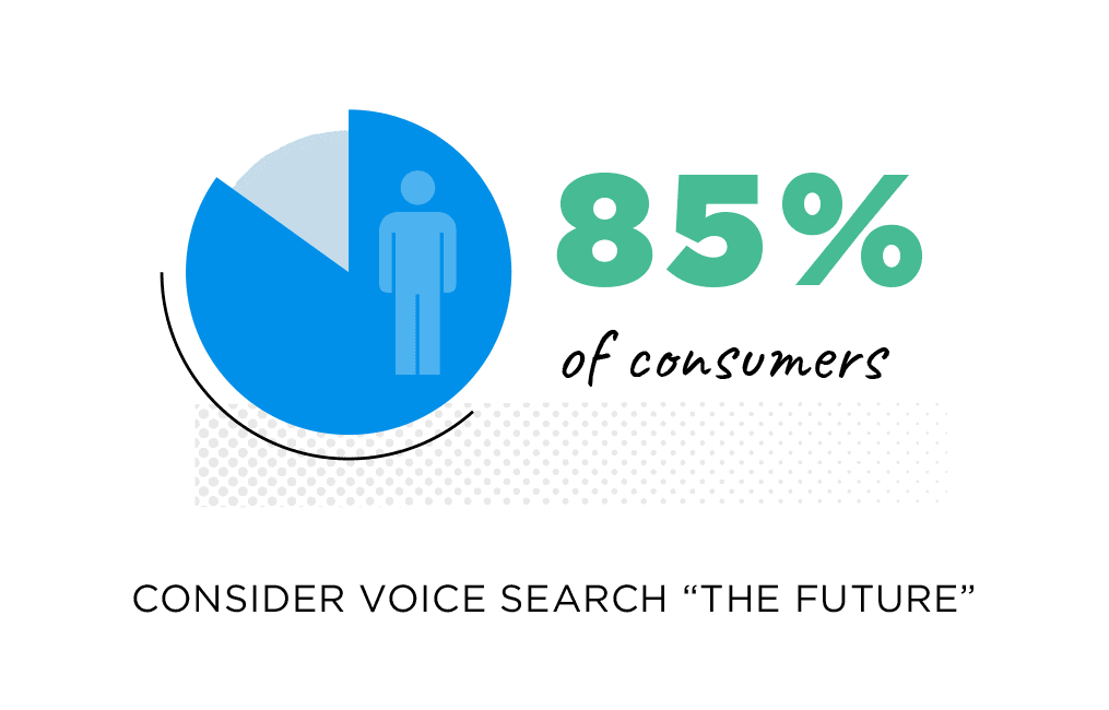 "85% of consumers consider voice search ""the future"""