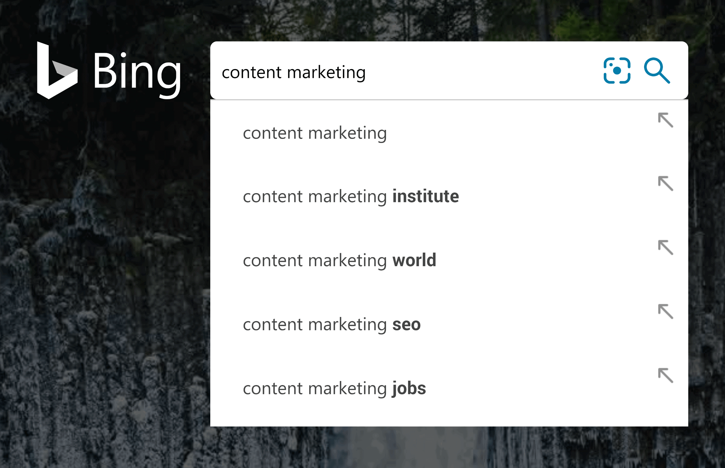 "Bing search – ""content marketing"" – Suggestions"