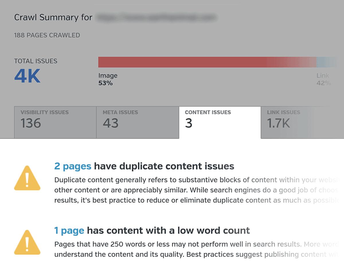 Raven Tools – Duplicate Content