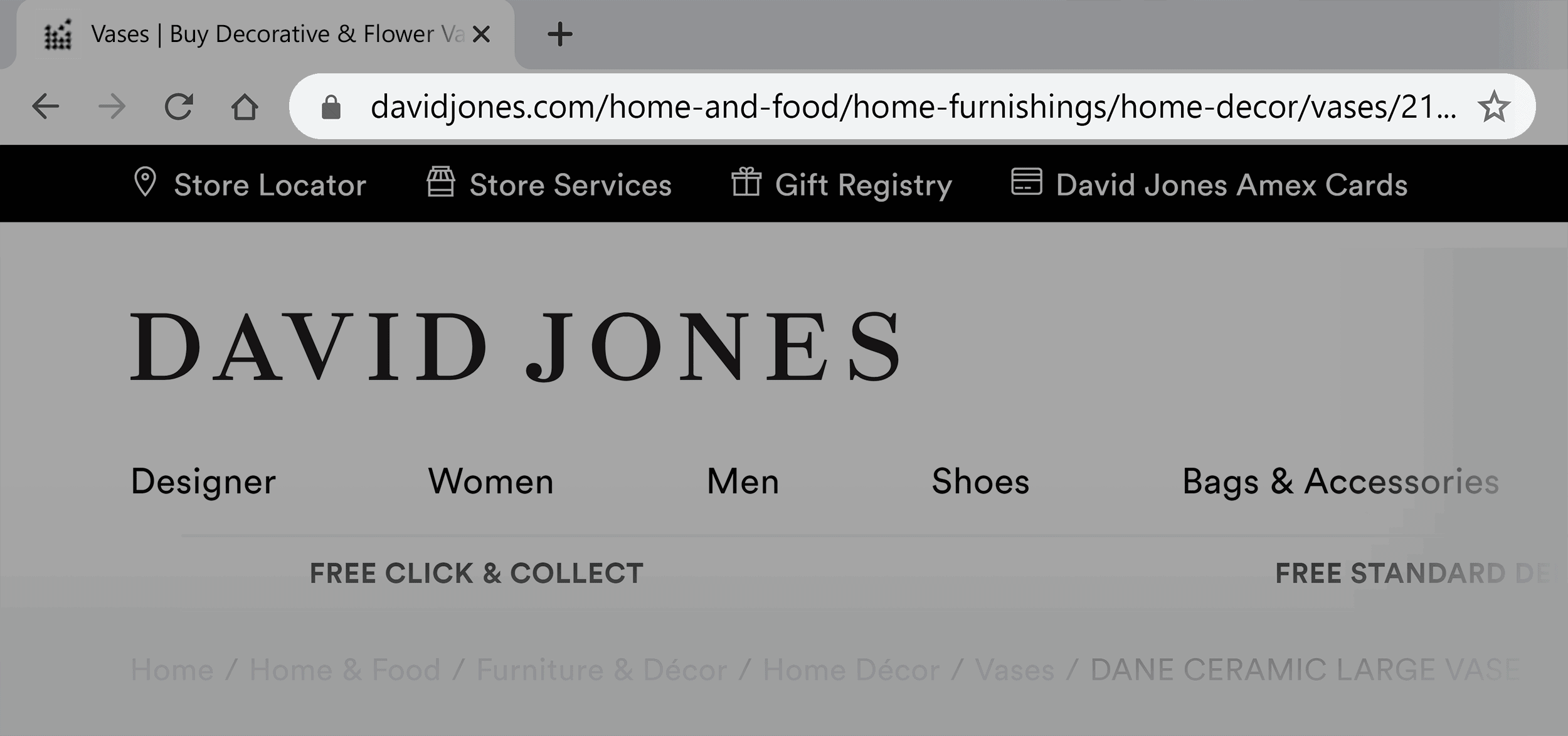 David Jones – Long URL example