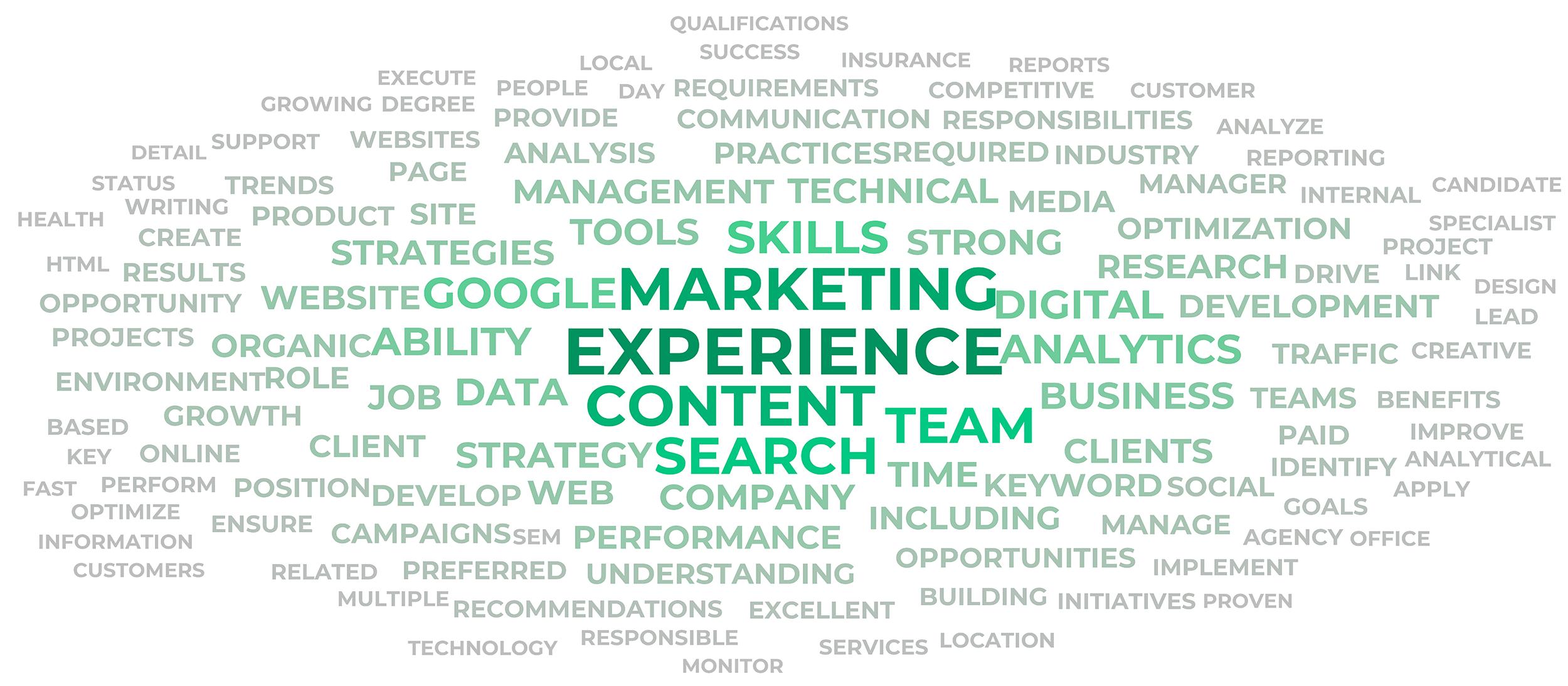 Job description terms – Word cloud