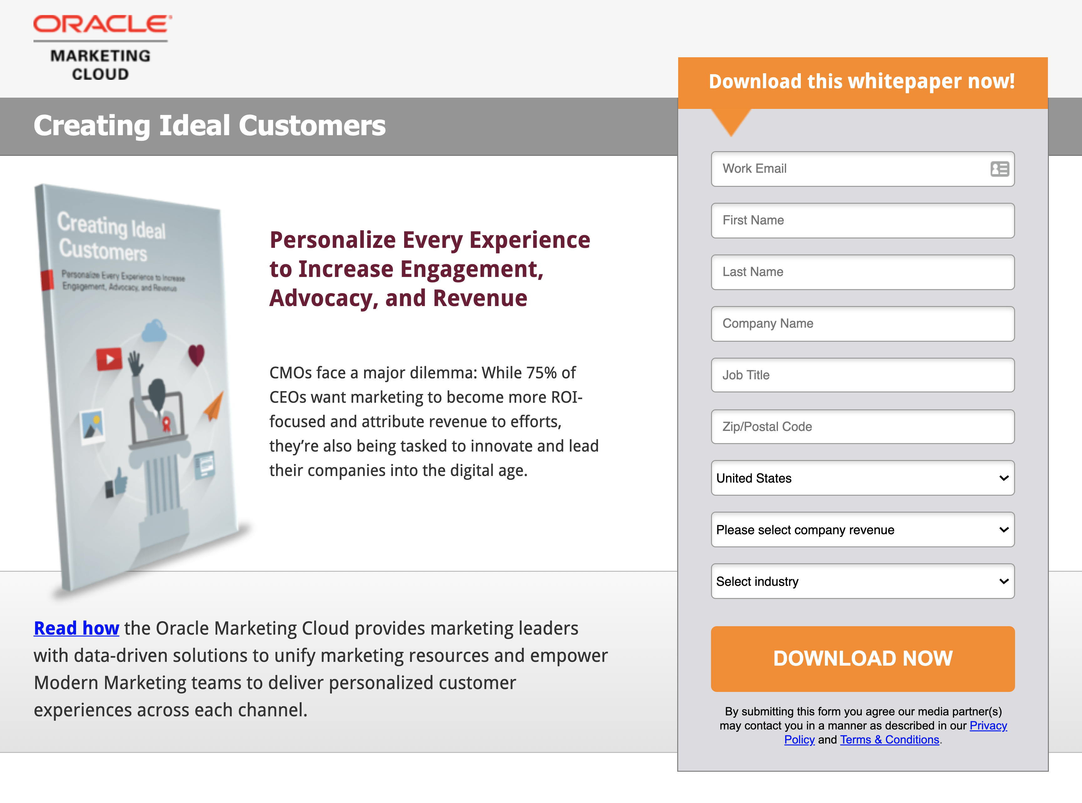 Creating Ideal Customers Squeeze Page
