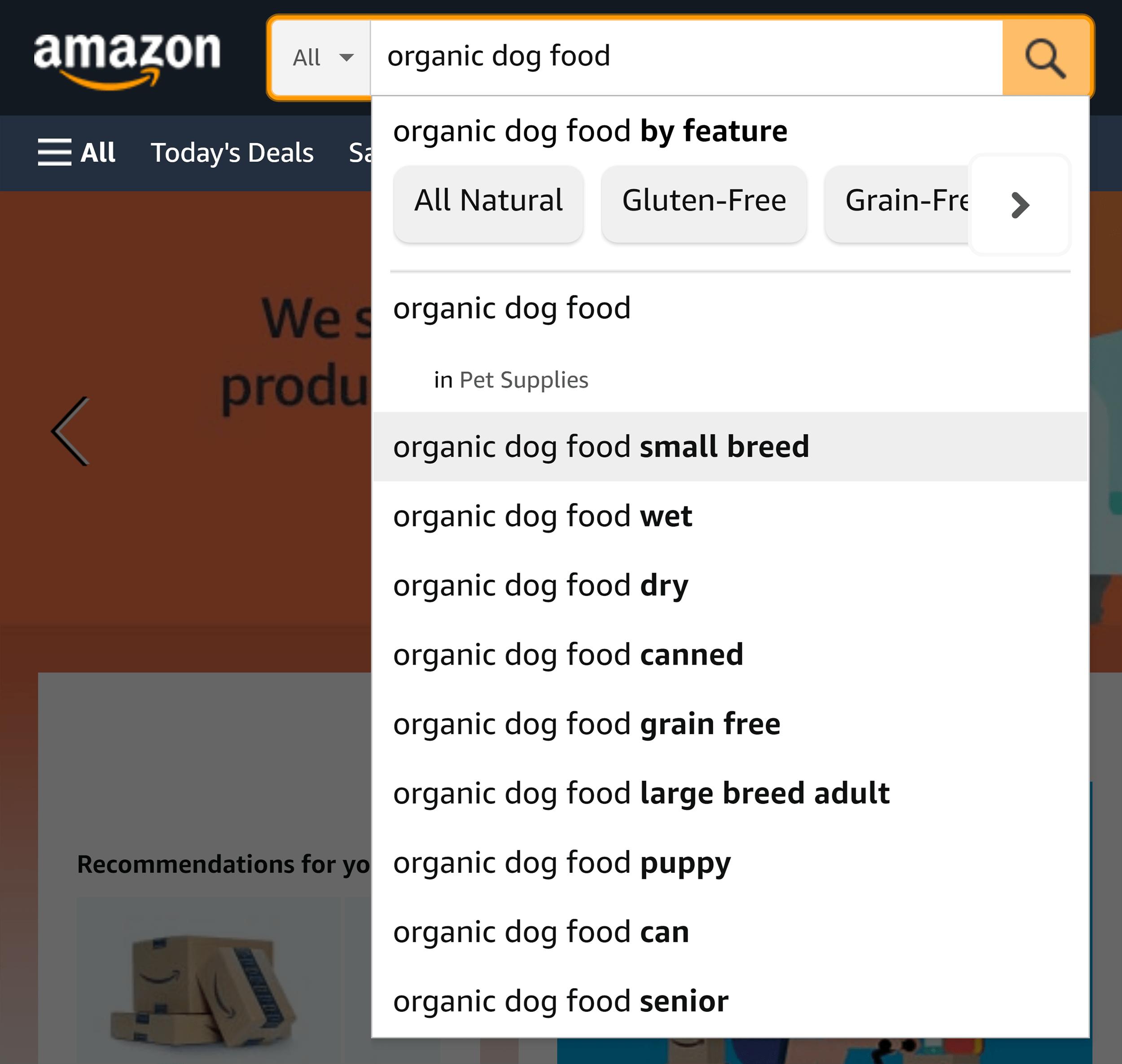 Amazon search – Organic dog food