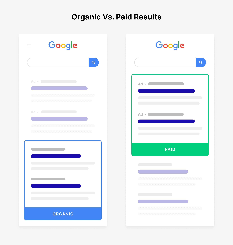 Organic vs. Paid Results